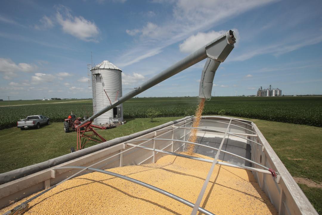 2018年6月13日,美國伊利諾伊州,農民裝載運輸大豆。 攝:Scott Olson/Getty Images