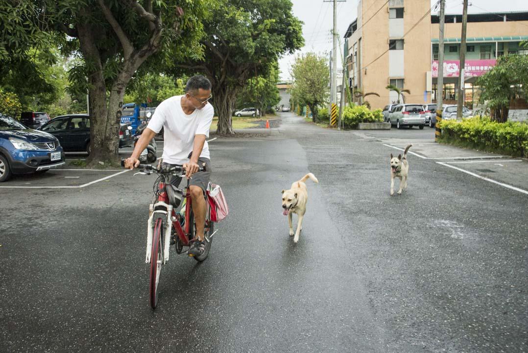 胡梓康與鄰居的兩隻狗,常常結伴前往位於台東糖廠的工作間。