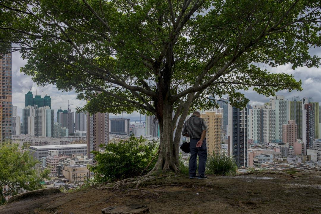 張炳良的五年任期過去,2012-17年公屋的平均興建量約為每年13000個,大概僅有過去香港三十五年每年平均的六成,這種供應滯後與公私營比例失衡所反映的,就是香港這個城市對生活方式選擇和城市規劃遠景的價值觀。  攝:林振東/端傳媒