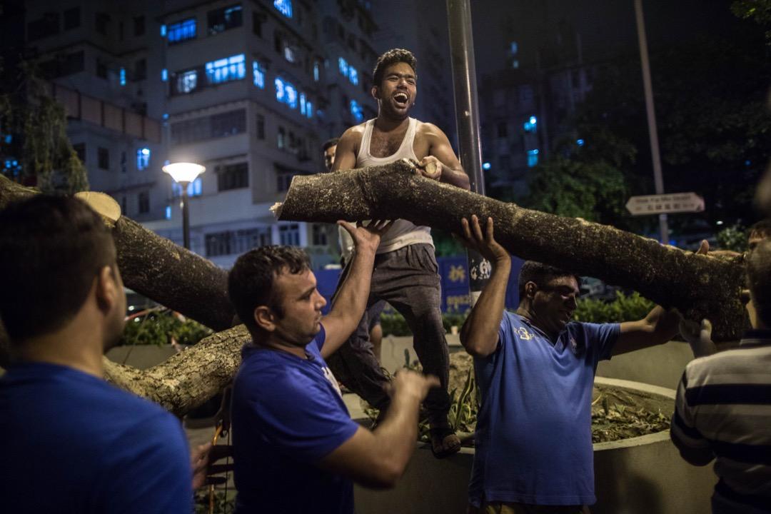 原本被一棵十多米高的塌樹壓住的公園,在20多名義工的努力下,一小時內幾乎完全地還原。