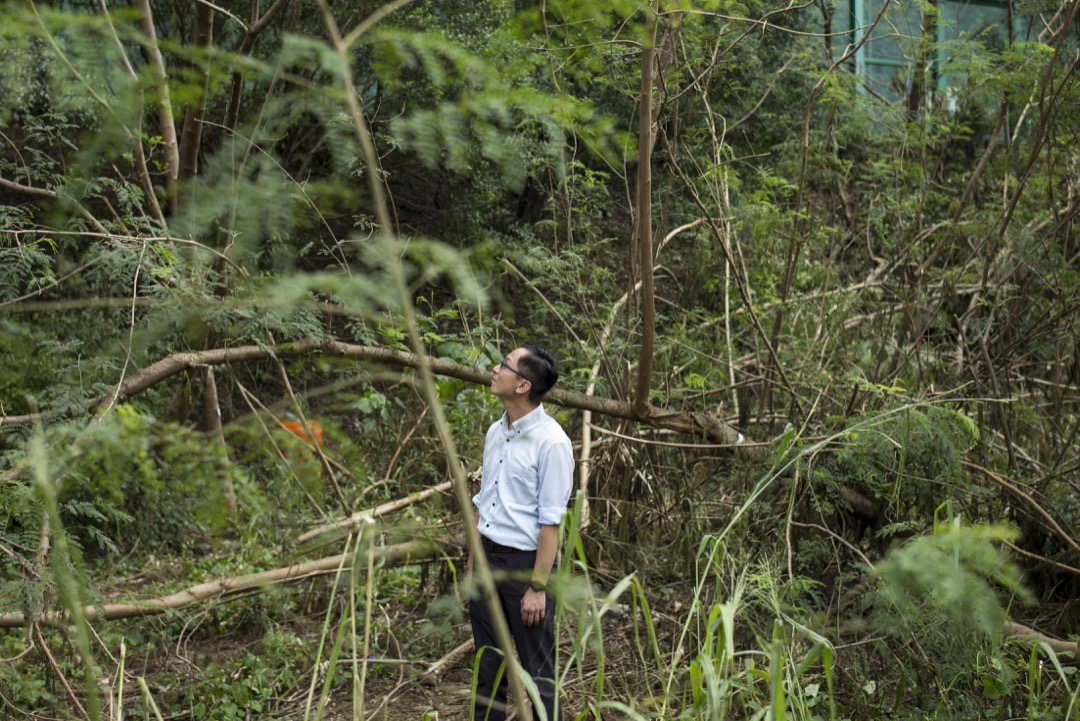 香港浸會大學國際學院樹木管理系講師鄧銘澤。