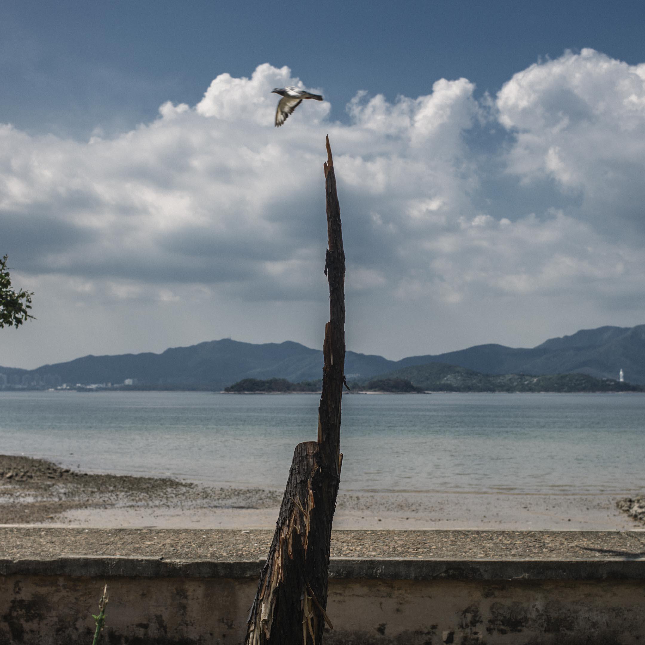 烏溪沙。 攝:林振東/端傳媒