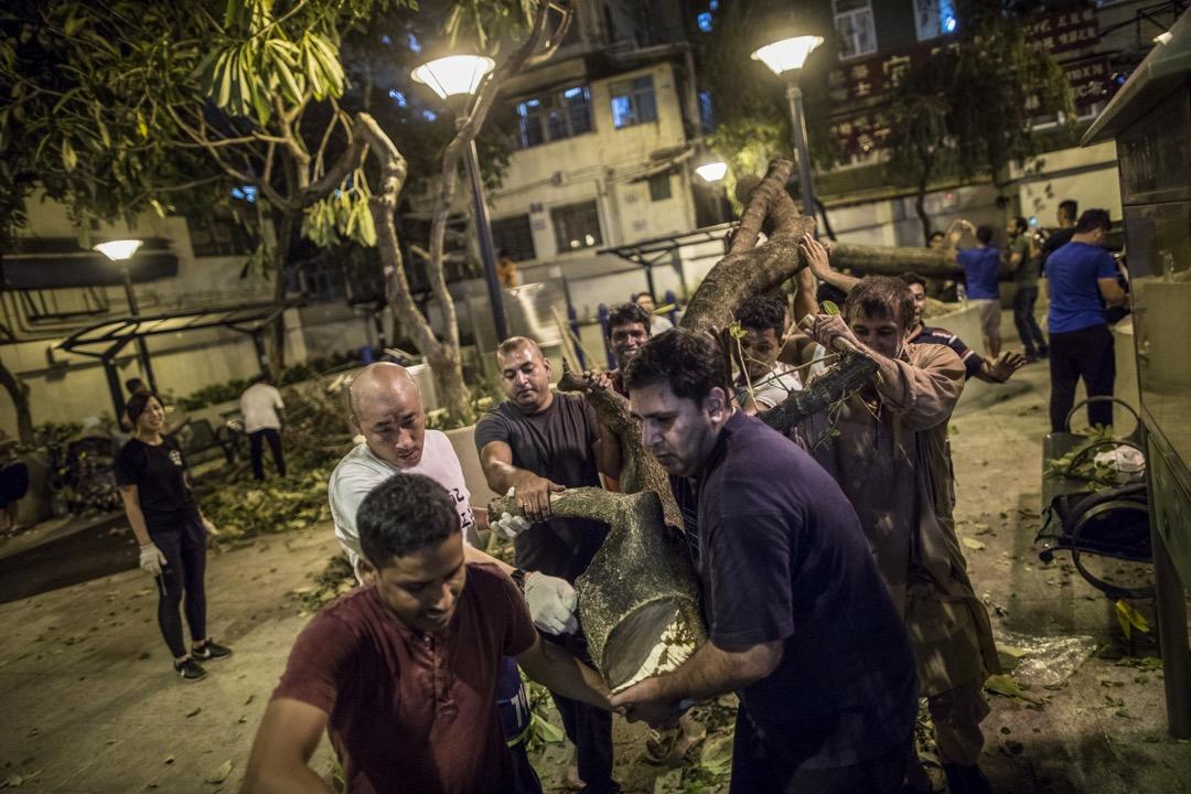 2018年9月20日,林慧敏和丈夫跟20多名南亞裔義工在深水埗的一個遊憩公園清理塌樹。 攝:Stanley Leung/端傳媒