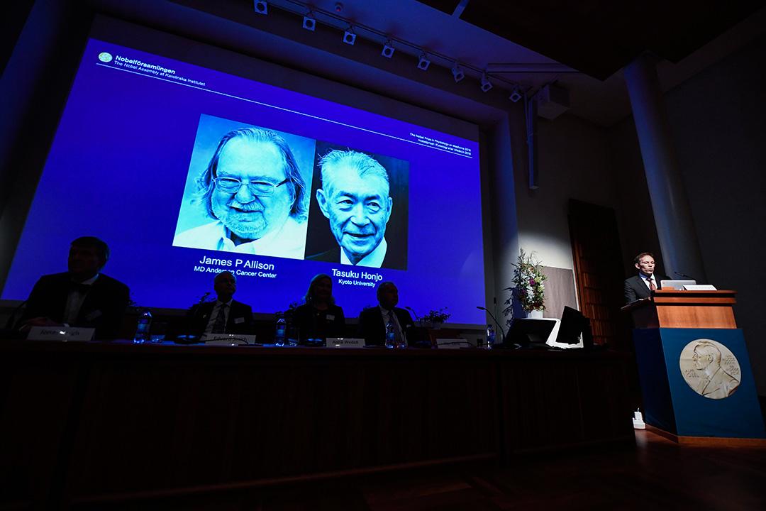 美國的艾利森和日本的本庶佑因癌症治療方面的成就而獲得2018年諾貝爾醫學獎。 攝:Jonathan Nackstrand/AFP via Getty Images