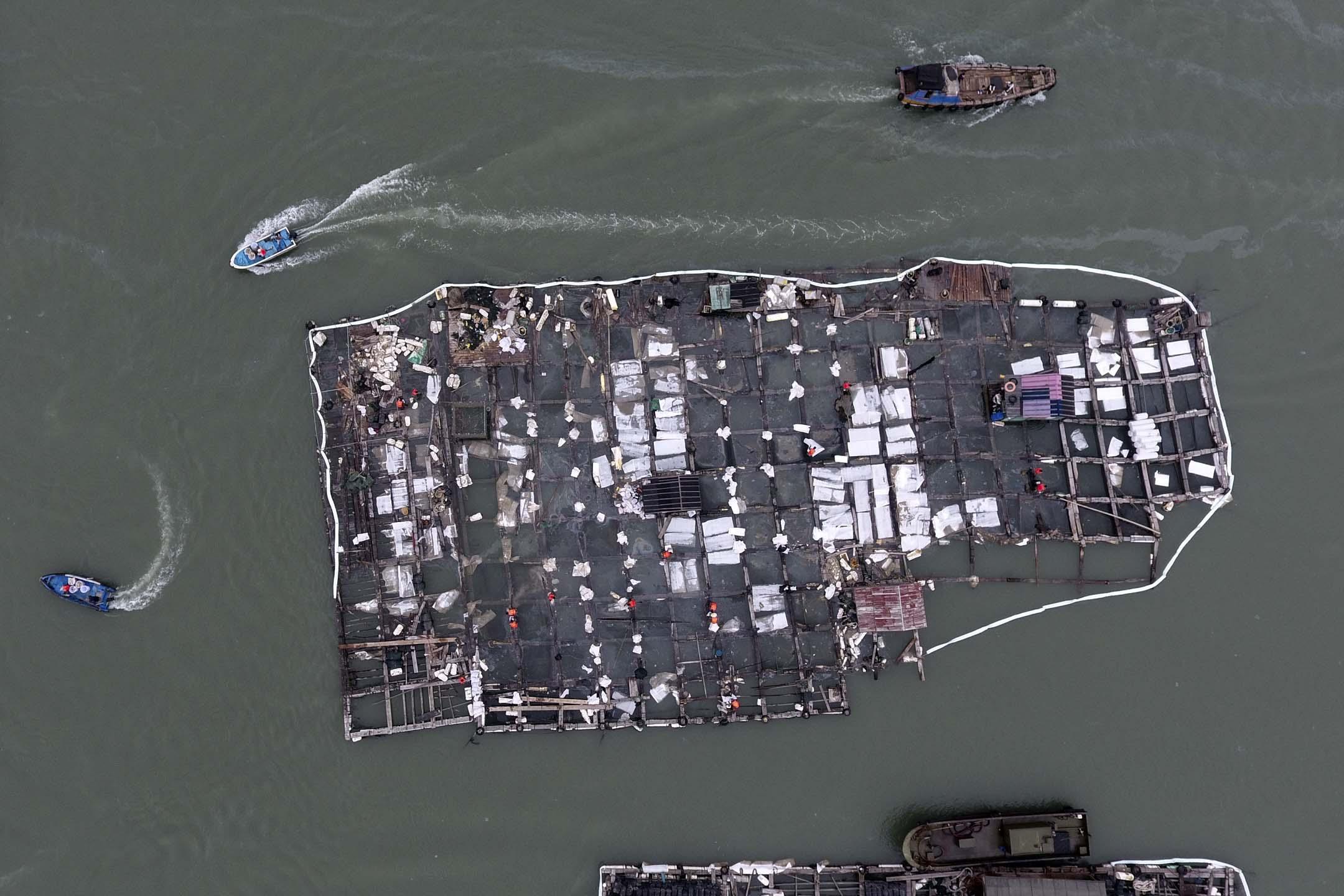 2018年11月9日,福建泉州碳九泄漏影響近海,安全生產責任事故引發環境汙染。漁排養殖區內漁排的清汙、加固等工作還在進行中,在受損較嚴重的漁排區,現場工作人員正把網箱內的汙染物進行清理。
