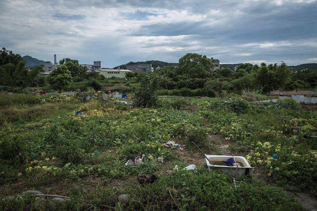 這塊土地位在新竹縣竹東鎮,北興路與工業一、二路交叉口,面積約三公頃,比一座標準棒球場稍小一點。