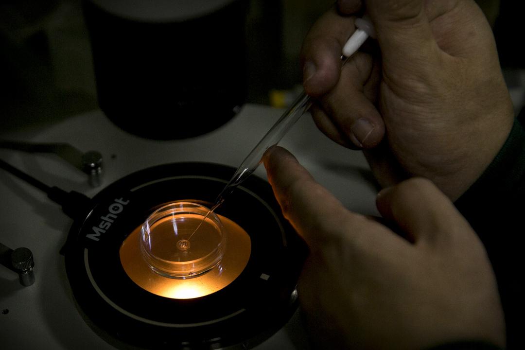 2018年11月26日,深圳科學家賀建奎宣布,一對基因編輯嬰兒於11月在中國健康誕生。這對雙胞胎的一個基因經過修改,使她們出生後即能天然抵抗艾滋病。 攝:Imagine China