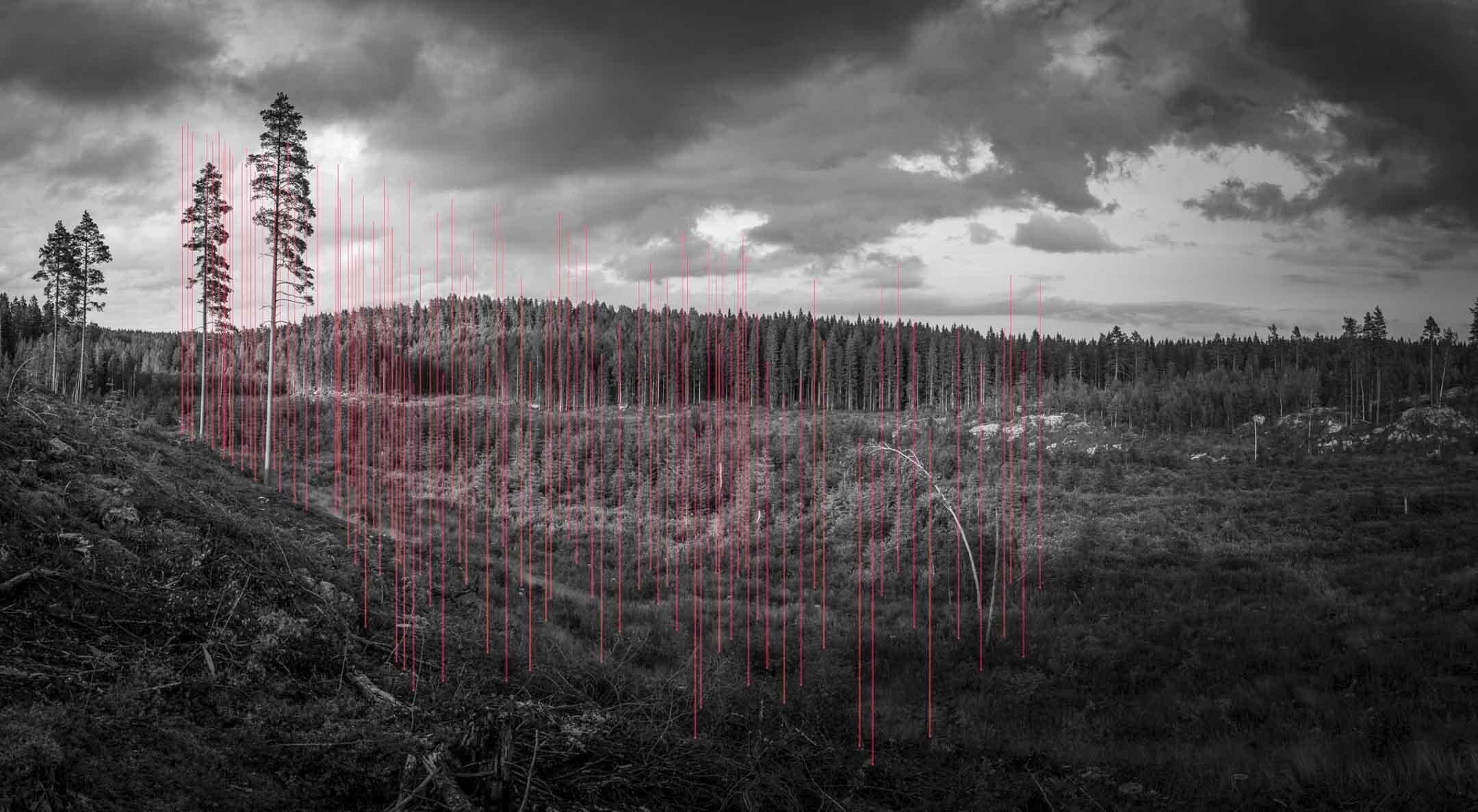 「了解100公頃」(100 hectares of Understanding)系列-100 PlantedSaviors Of The Heritage,2015 © Jaakko Kahilaniemi