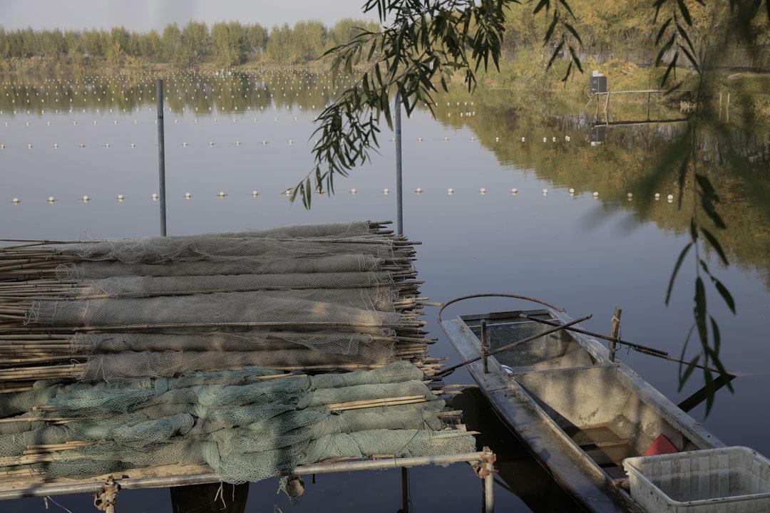 一米漁網12元,老陳頭家有3000米。現在,這些漁網也賣不出去了。
