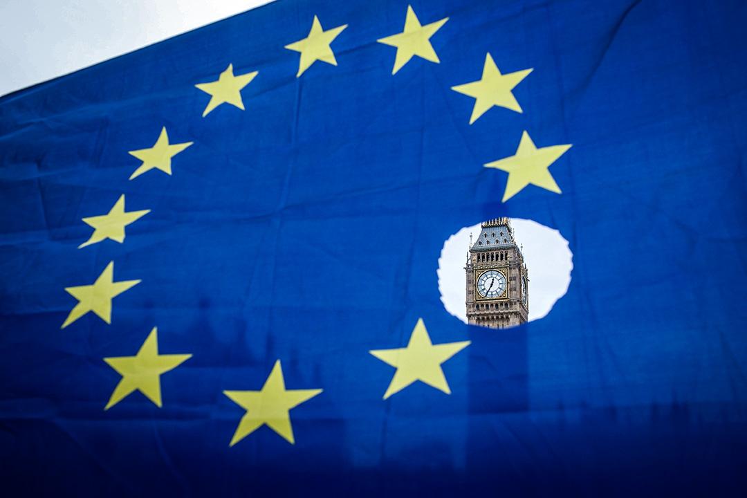 2017年3月29日,一名支持英國留歐的示威者舉起歐盟旗幟。