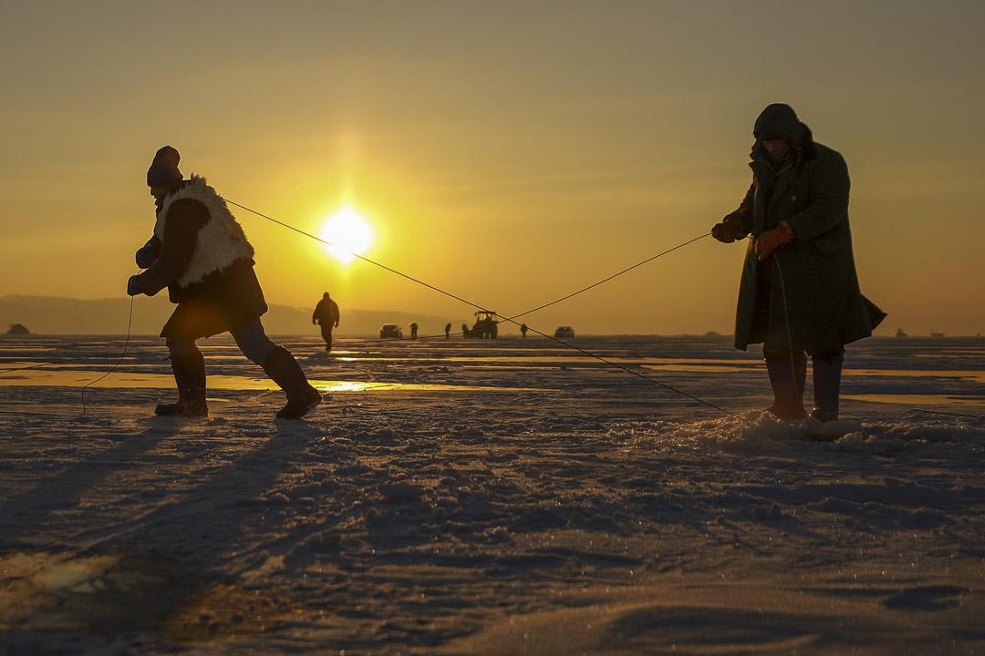 日出前,漁民扛著鋼繩向前拉。