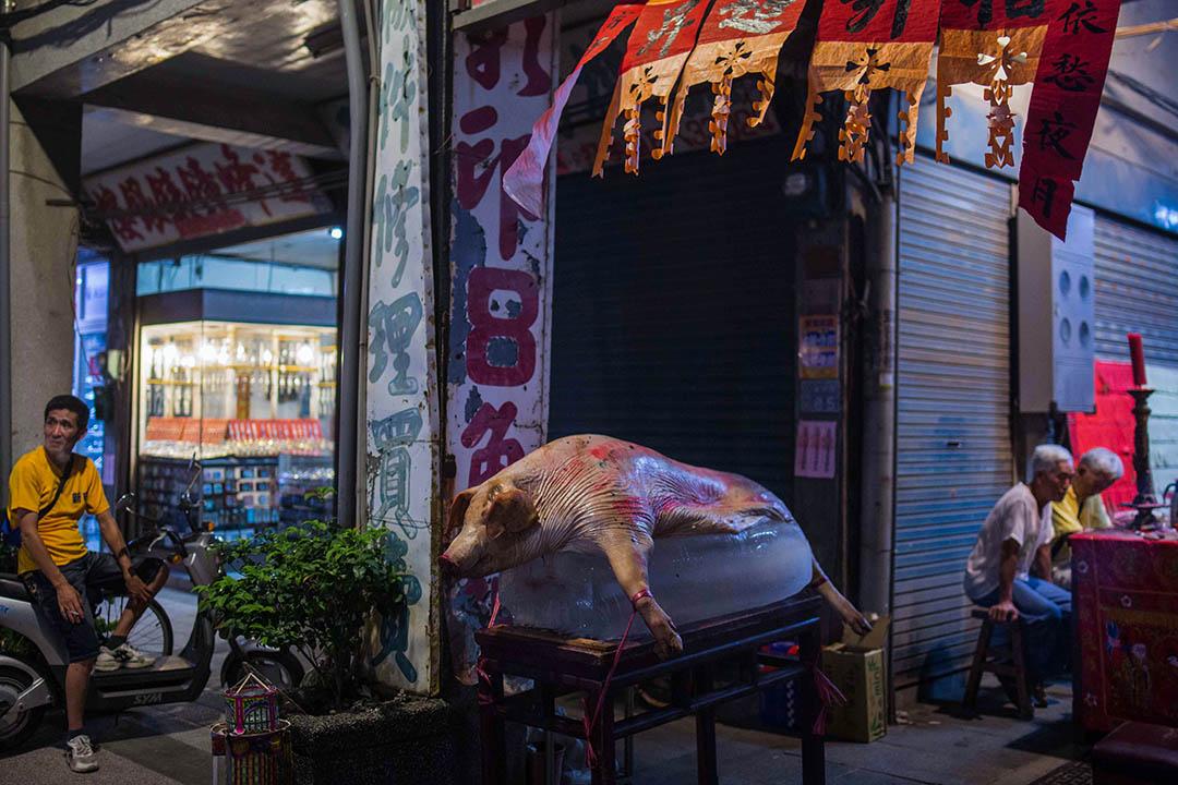 根據農委會的統計數據,從1994年開始,連續三年台灣養豬頭數皆超過一千萬隻,直到1996年台灣養豬業達到最高峰,全台養豬頭數高達10,698,366隻,當年度單單豬肉出口的外匯收入有十六億美元,主要的市場—日本,其進口的豬肉有41%來自台灣,為所有日本豬肉進口國之冠。圖為金門。