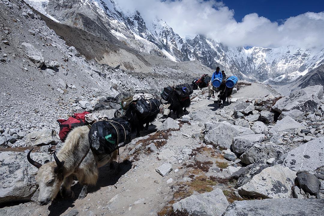 在喜瑪拉雅山脈的懷抱裡,我們都得了斯德哥爾摩症候群,愛上這個讓我們飽受寒冷、疲憊、高山症折磨的加害者,還發誓有生之年還要回來爬山。