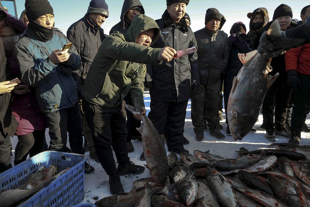 眾多市民趕到冬捕現場購買活魚。
