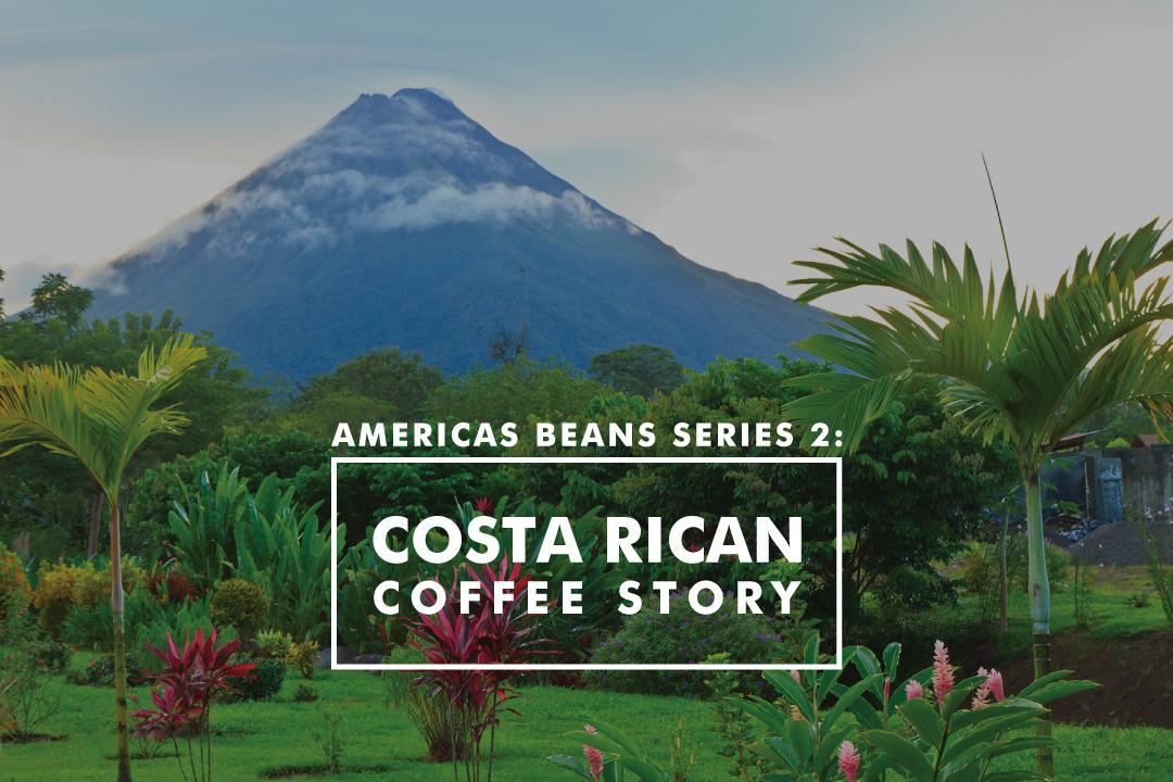 亞美利加荳子系列 2 ——哥斯達黎加的故事