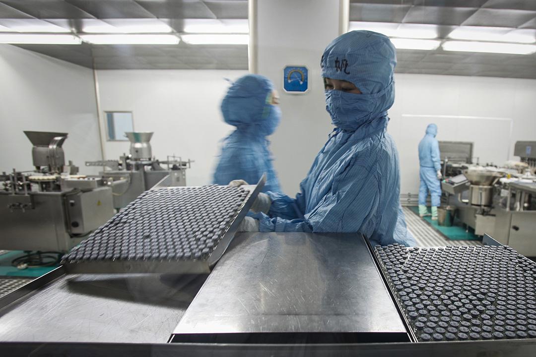 2009年10月12日,長春長生生物有限公司的工作人員正在分裝甲流疫苗。