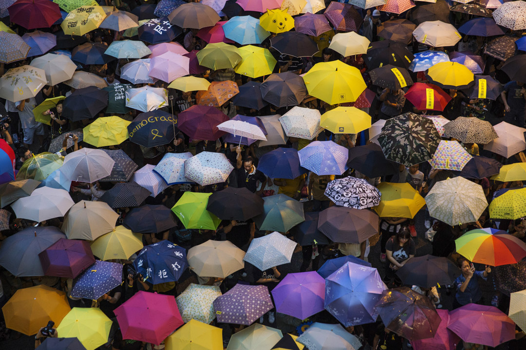 2014年10月28日,雨傘運動金鐘現場,參加者一齊舉起雨傘。 攝:Paula Bronstein/Getty Images