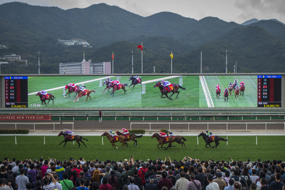 大年初三,市民入場觀賞賀歲馬。