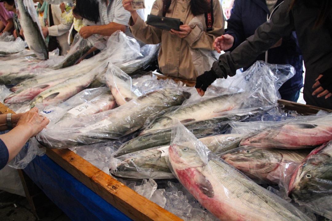 石狩市的魚市場。
