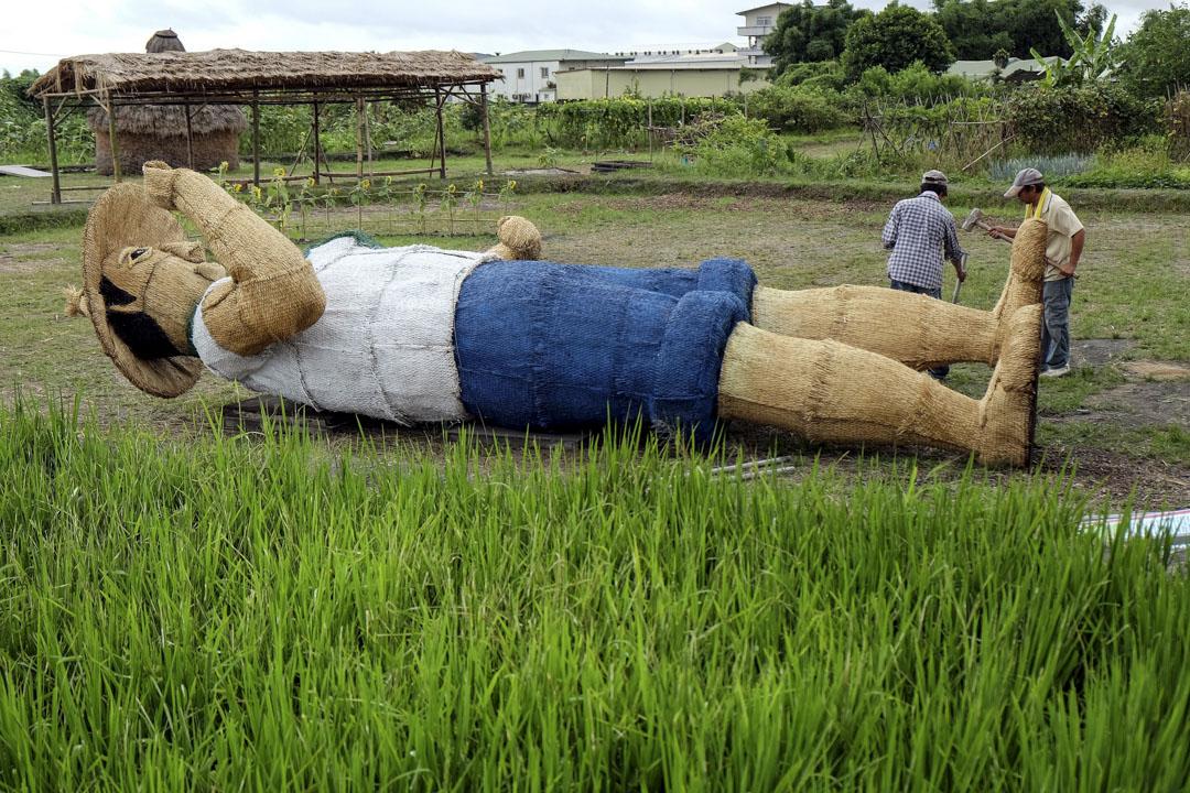 由於颱風接近,宜蘭縣農民在農場上捆綁起一個6.5米高的稻草人。 攝:Sam Yeh/AFP/Getty Images