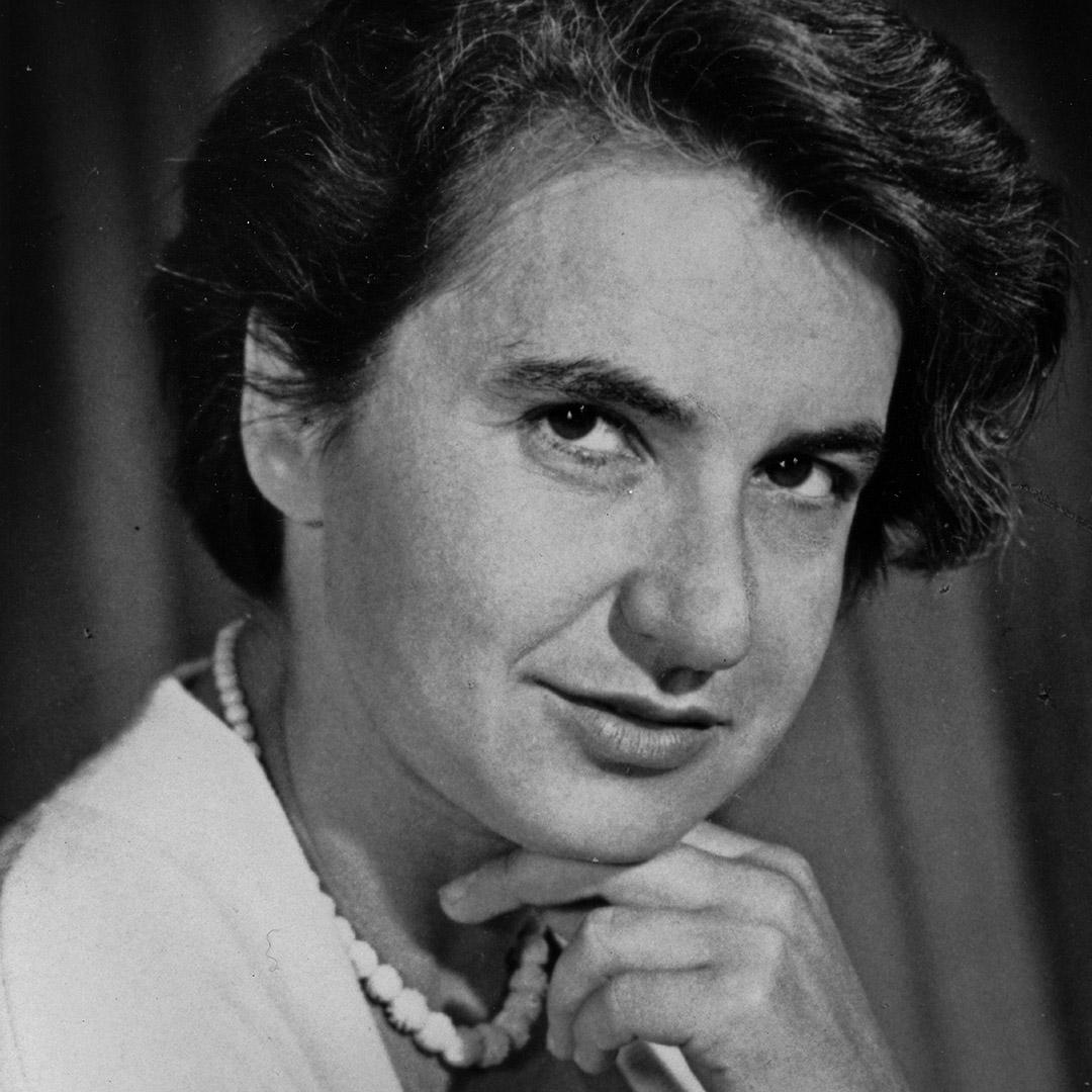 羅莎琳·富蘭克林 Rosalind Franklin。