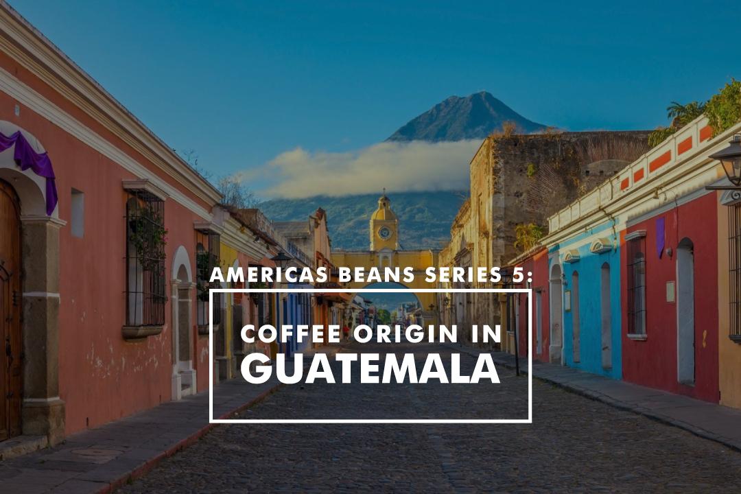 美洲豆系列 5 - 咖啡產地在危地馬拉