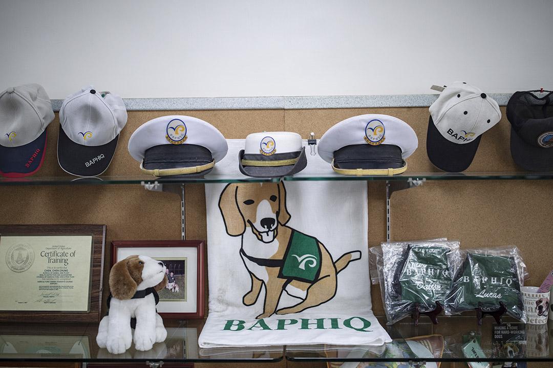 關於檢疫犬的紀念品。