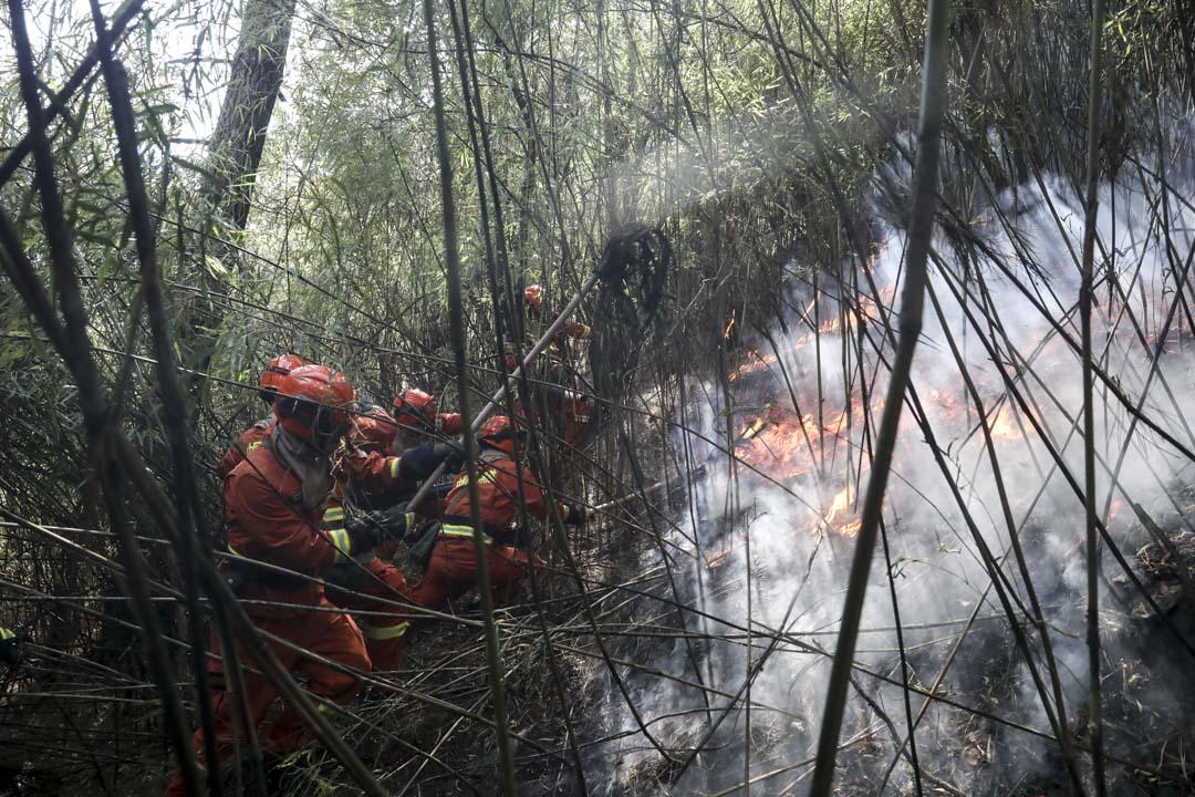 2019年2月9日,四川涼山木里縣森林大火已撲滅。