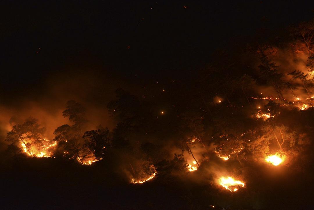 2019年2月9日,四川涼山木裏縣森林大火已撲滅 1500人蔘與撲救。
