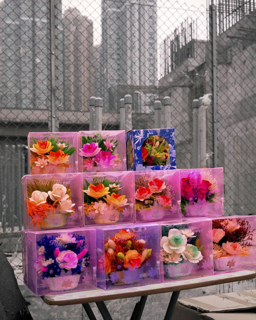 《Hong Kong Flora》
