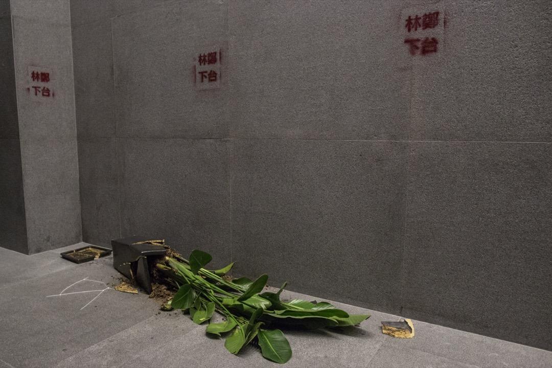 立法會1M樓地上一個盆栽。