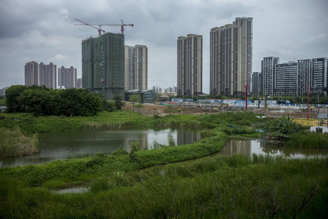 80年代開始,香港「愛國商人」霍英東就到此大舉投資,建議把南沙建成「擁有國際性港口的現代濱海小城」。