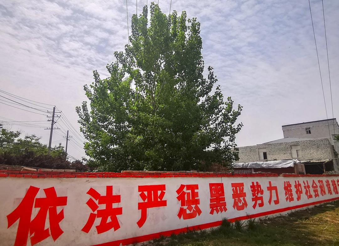 一圍牆上的掃黑除惡專項鬥爭宣傳標語。