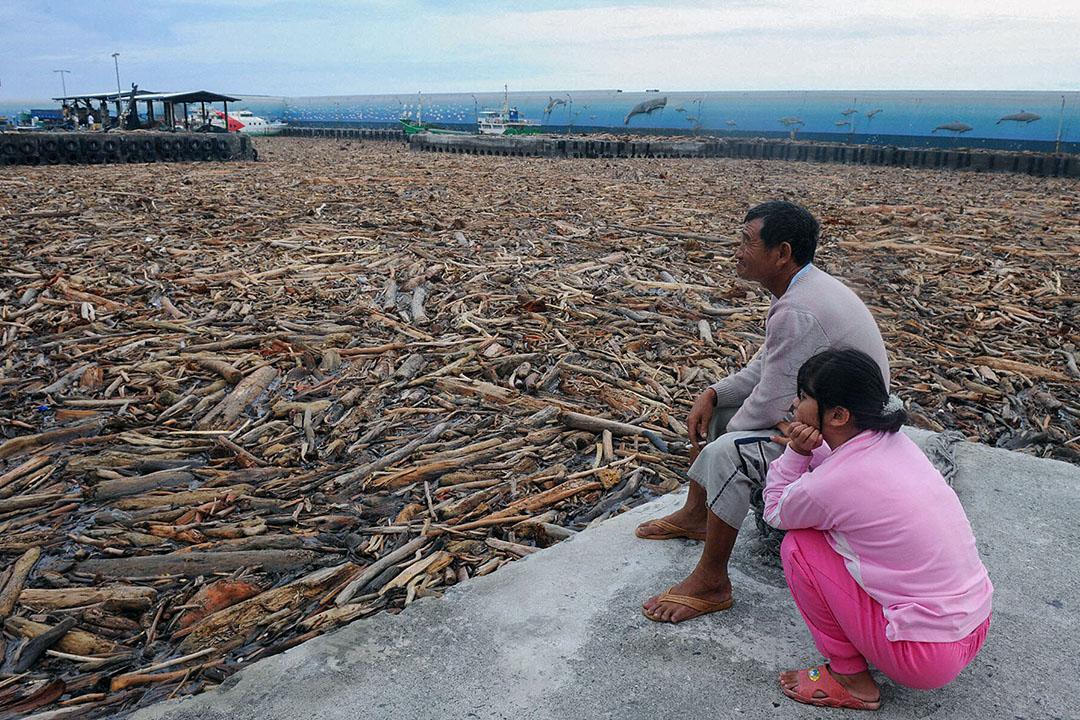 2009年8月10日,居民在台灣東南部的台東魚港觀看被沖入魚港的木材。