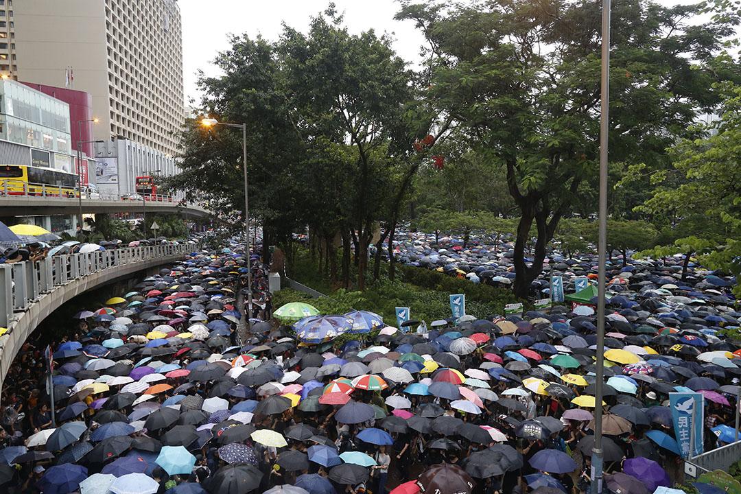 8月18日,下午4點左右,吿士打道,香港市民的雨傘鋪滿整個道路