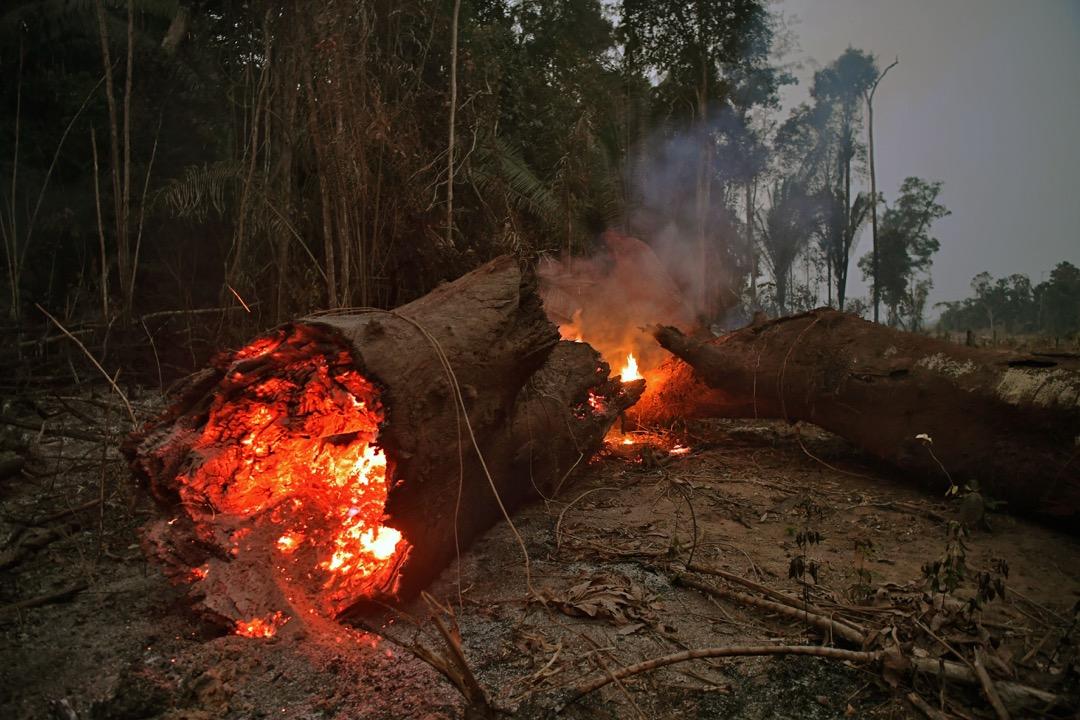 全球最大熱帶雨林,有「地球之肺」稱號的巴西亞馬遜森林正遭遇有紀錄以來最頻繁的火災。 攝:Carl de Souza/AFP/Getty Images