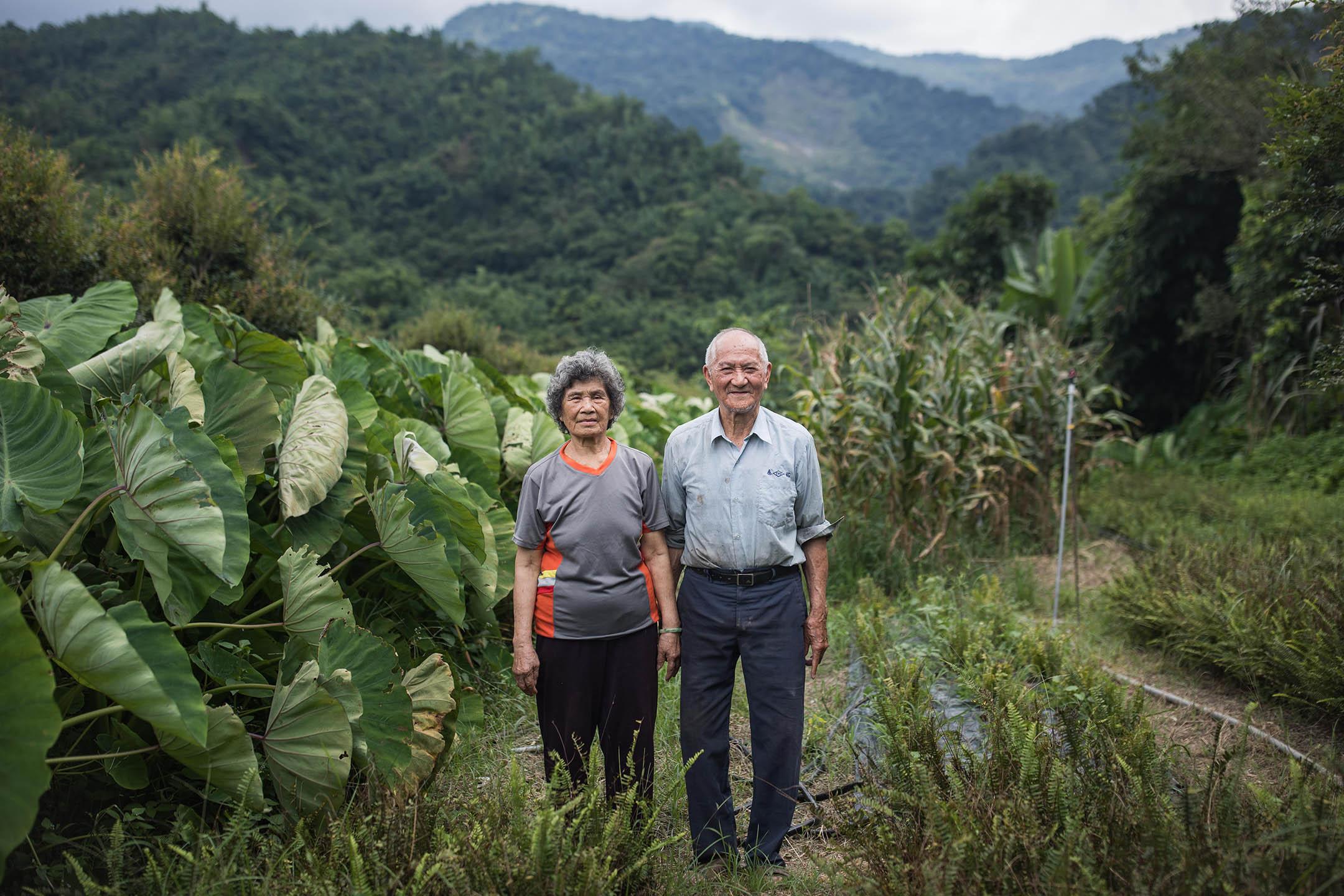小林村民周潘秀緞與丈夫周坤全在自己的農田上。 攝:陳焯煇/端傳媒