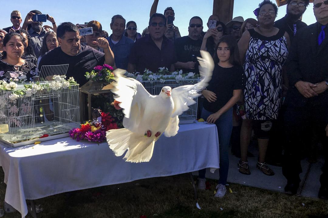 2019年8月17日,艾爾帕索槍擊案的一位受害者葬禮上有釋放白鴿儀式。 攝:Carol Guzy/ZUMA Wire