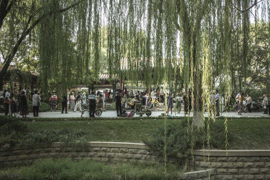 格格說:「菖蒲河公園就是我們的幼兒園,能讓我們一幫『老兒童』散心解悶也是好的。」