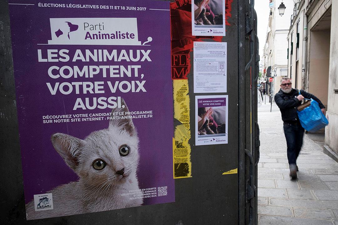 """2017年6月7日,一名男子在巴黎的""""Parti Animaliste""""選舉活動海報旁走過。"""