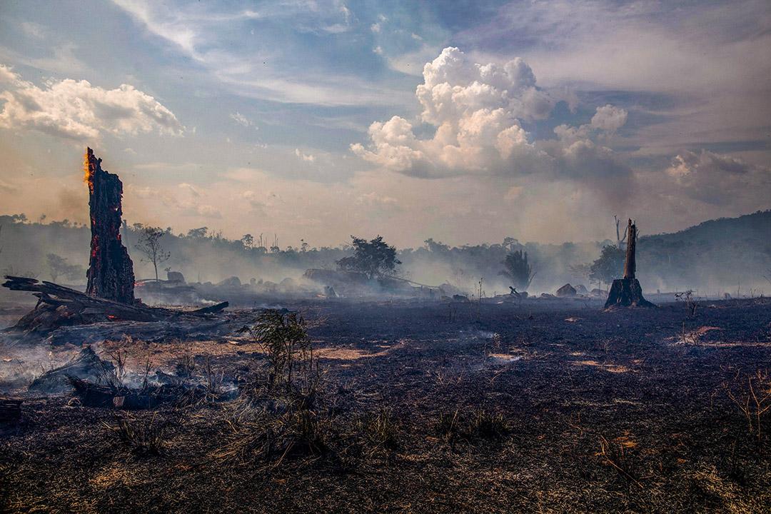 2019年8月27日在亞馬遜河流域,巴西帕拉州阿爾塔米拉的森林被燒毀。 攝:Joao Laet/AFP via Getty Images