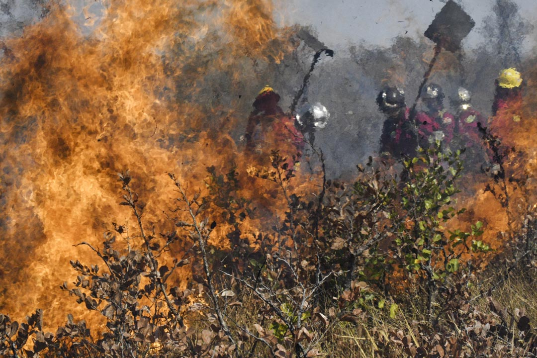 2019年8月29日,消防員在亞馬遜火災現場。