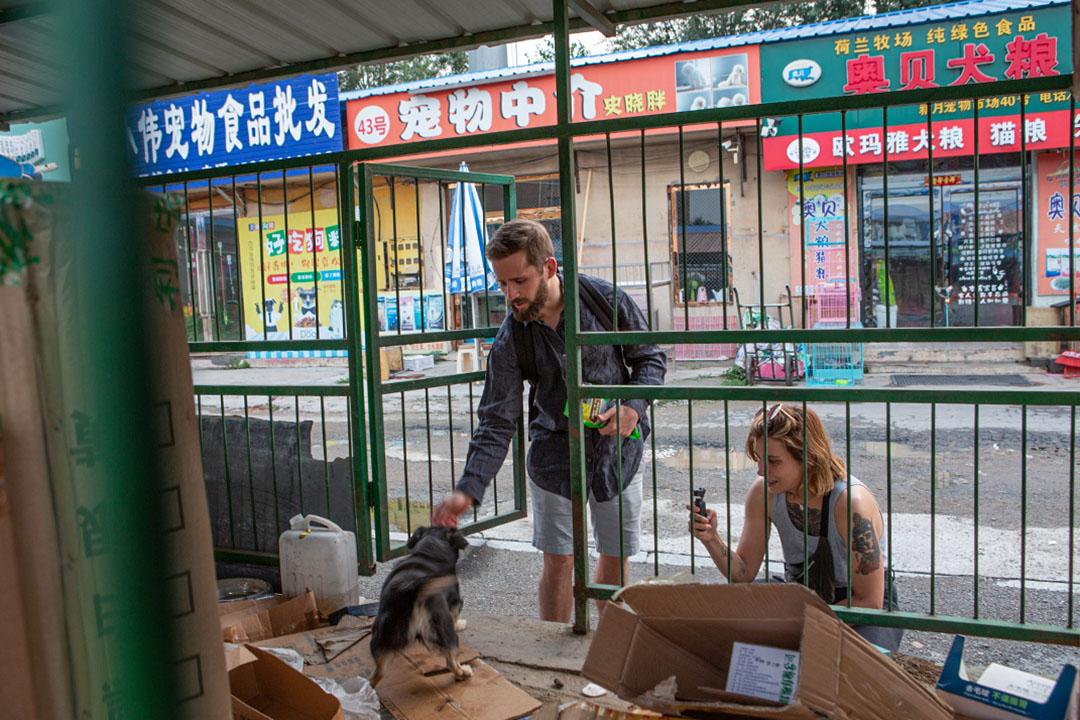 2019年7月25日,William Burkhardt於中國長春寵物市場。