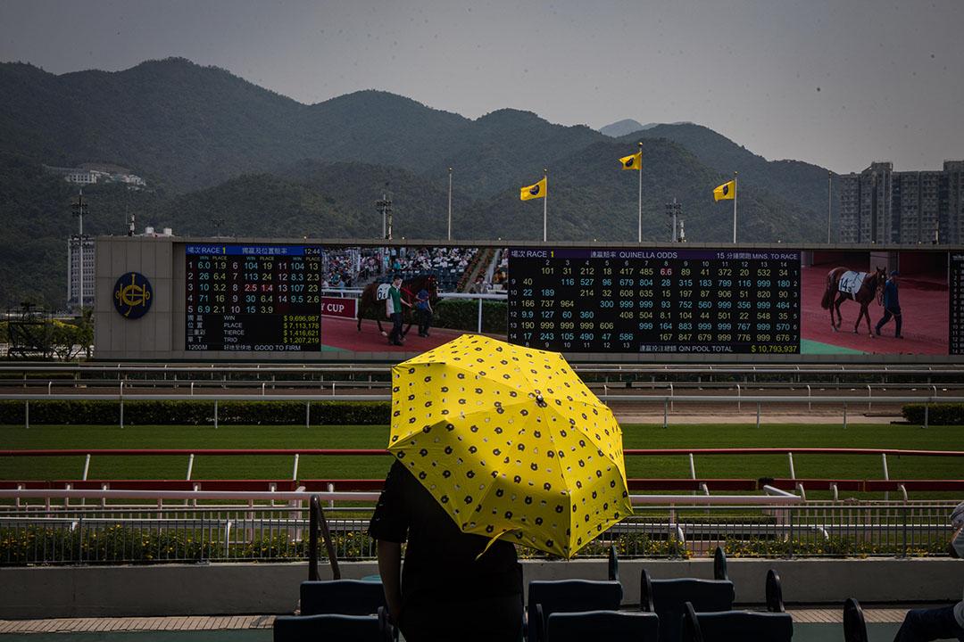 10月1日,下午,沙田賽馬會內,市民觀看賽馬。