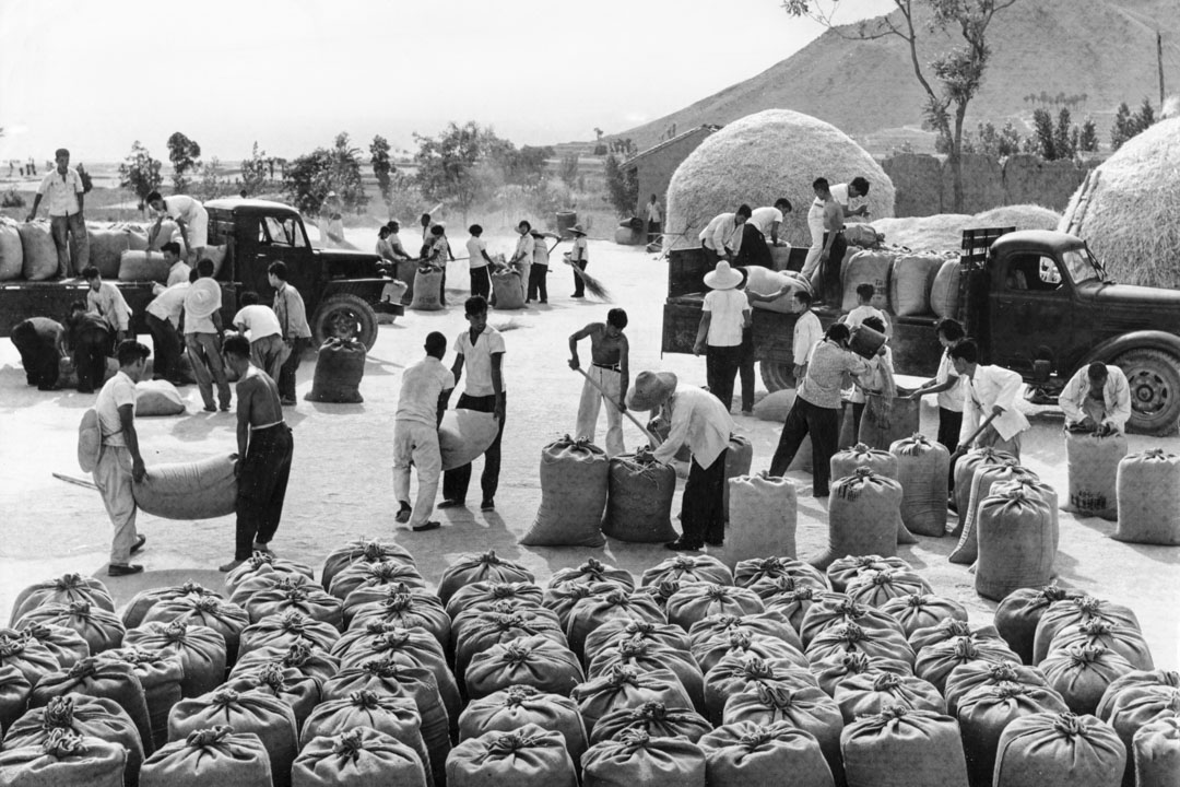 1967年,中國北方山西省的一個人民公社成員,裝載著小麥曬乾後運往中央政府。