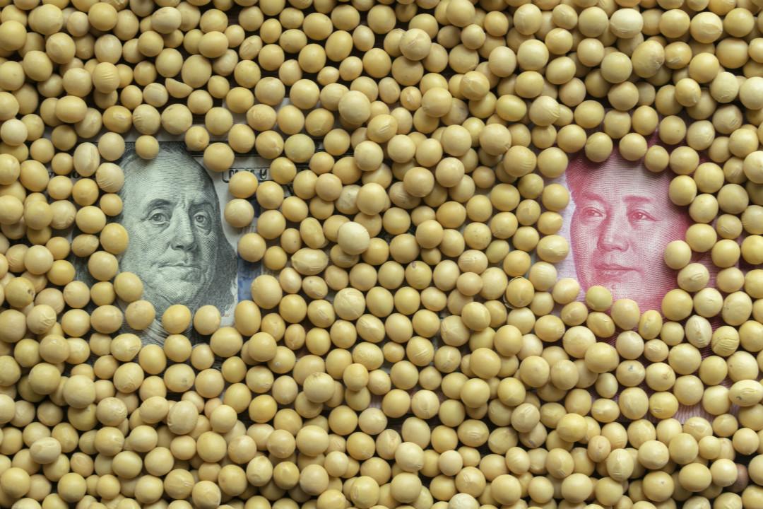 2019年10月13日,美國總統特朗普宣稱與中國達成第一階段貿易協議,中國已大量採購美國農產品。 攝:Zhang Peng/Getty Images