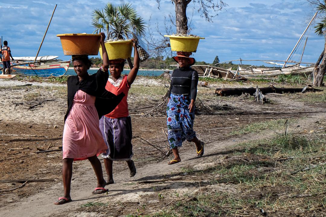 漁村的女性正在運送漁穫。