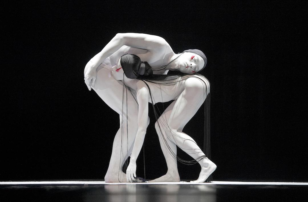 將於10月20日舉辦的《緩行中的漫舞》表演及工作坊。 圖片由無垢舞蹈劇場提供