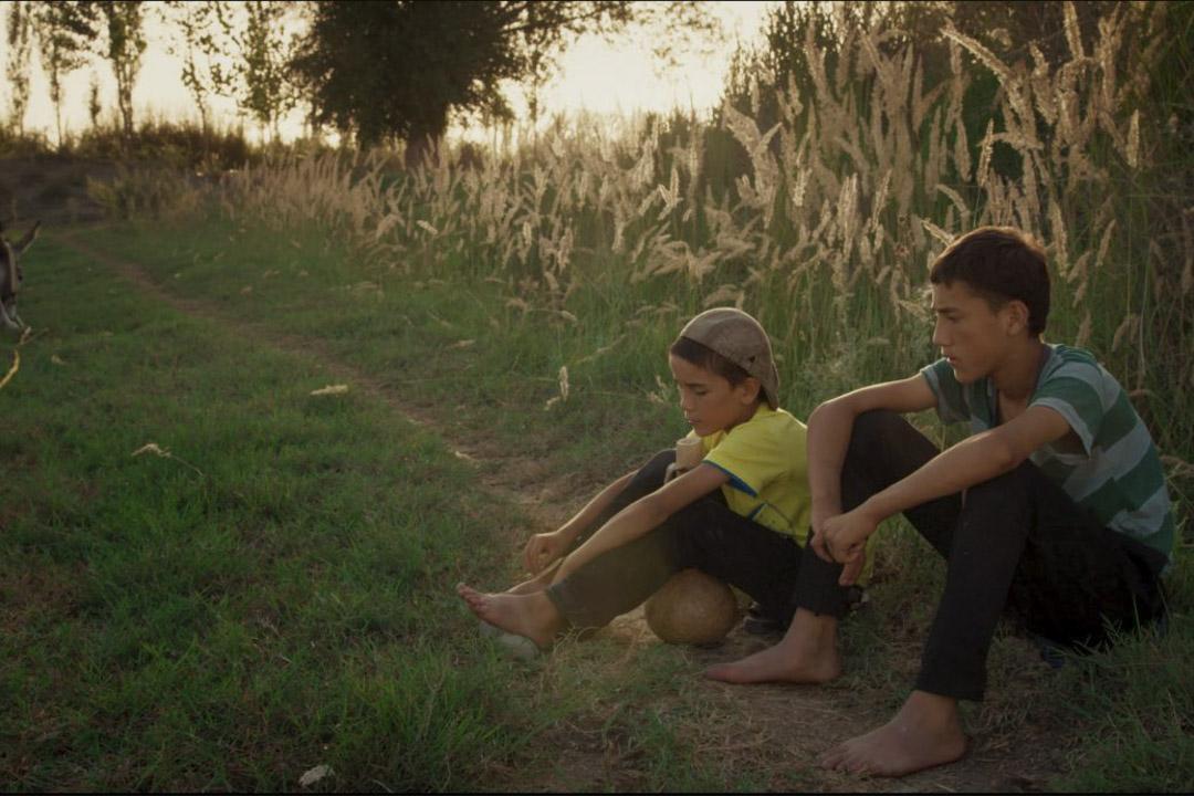 《第一次的離別》在金雞有三項提名。