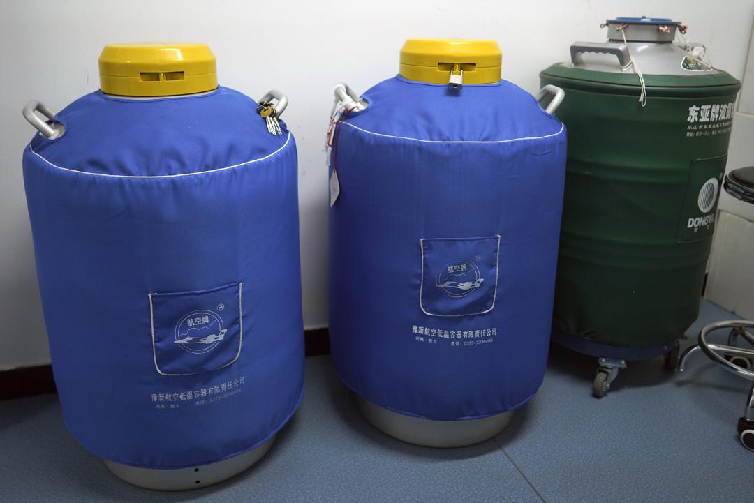 希諾谷的液氮保存寵物細胞服務,三隻罐子裏裝了至少1000只動物的體細胞。